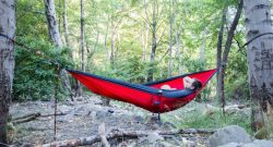 Tips for Beginners On Selecting The Perfect Hammock